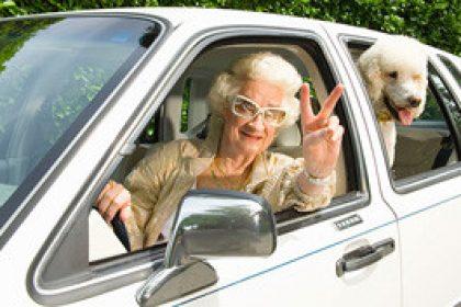 senior-driving-pet