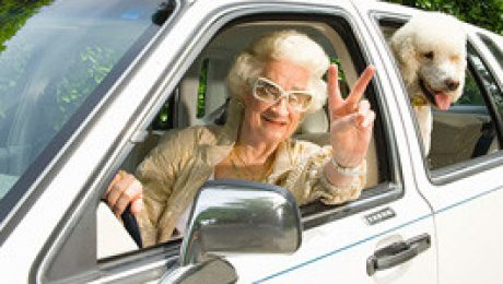 senior-driving-pet
