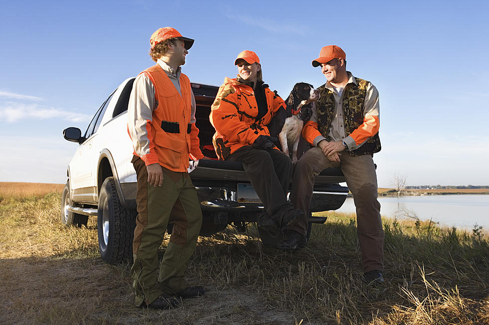 The Best of the Best: A Look at Online Hunter Safety Course Options
