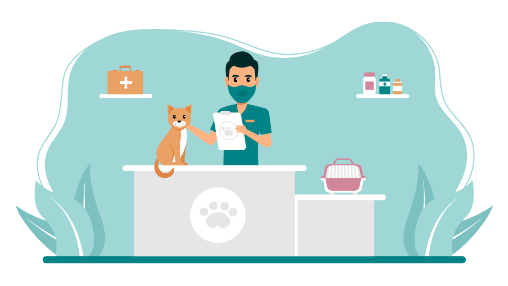 How To Become a Vet Tech